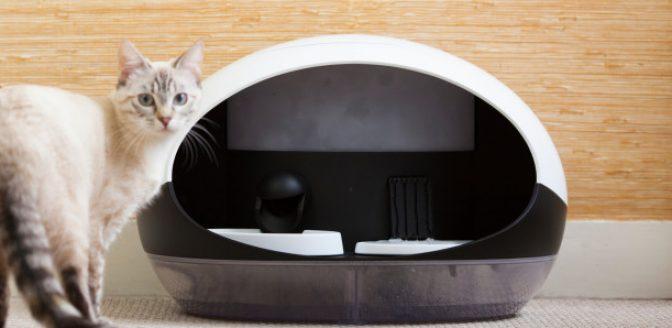 slimme kattenbak