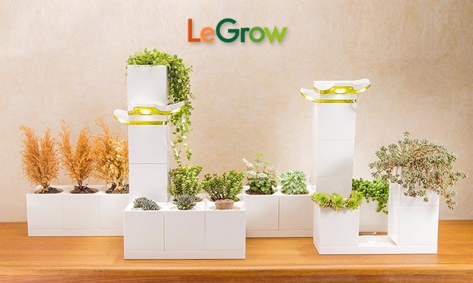 Kracht Planten Huis : Legrow verzorgt je planten zonder zorgen want