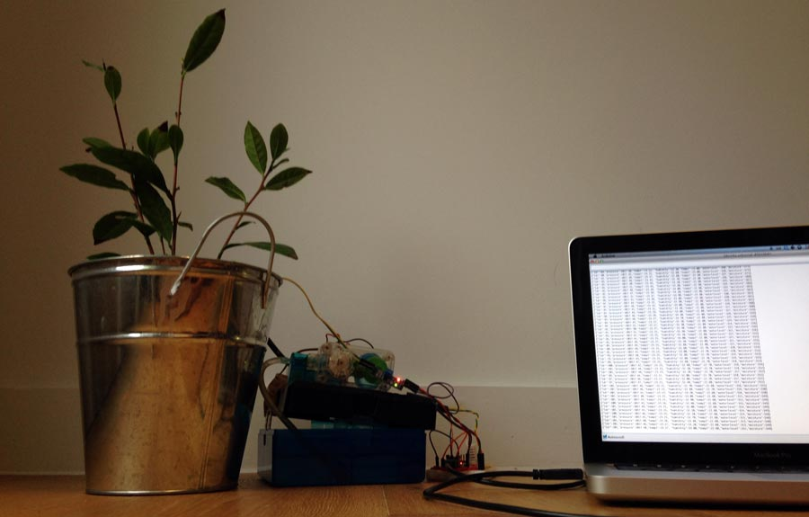 Raspberry Pi Planten project