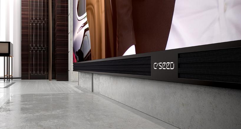 C Seed '262'
