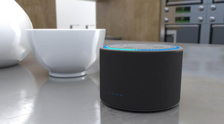 DOX batterij accessoire voor Echo Dot