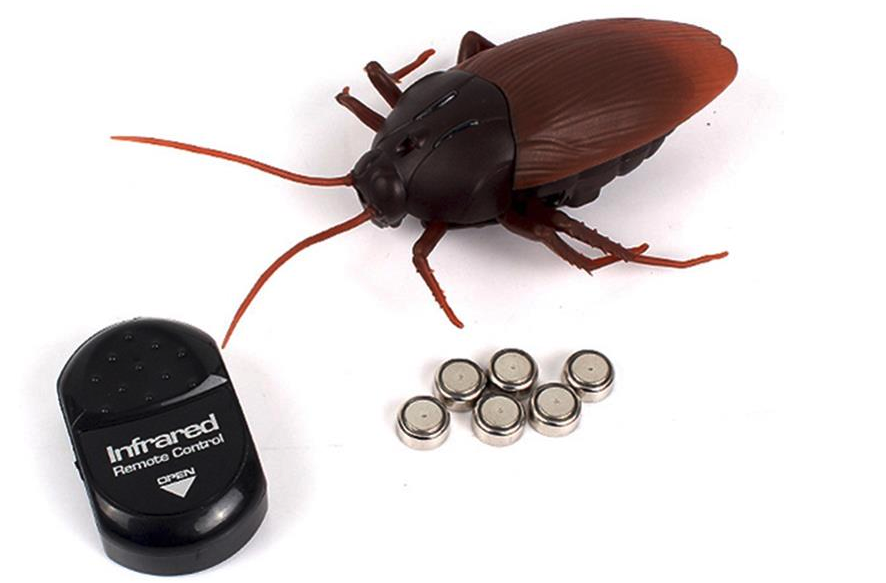 OP afstand bestuurbare kakkerlak