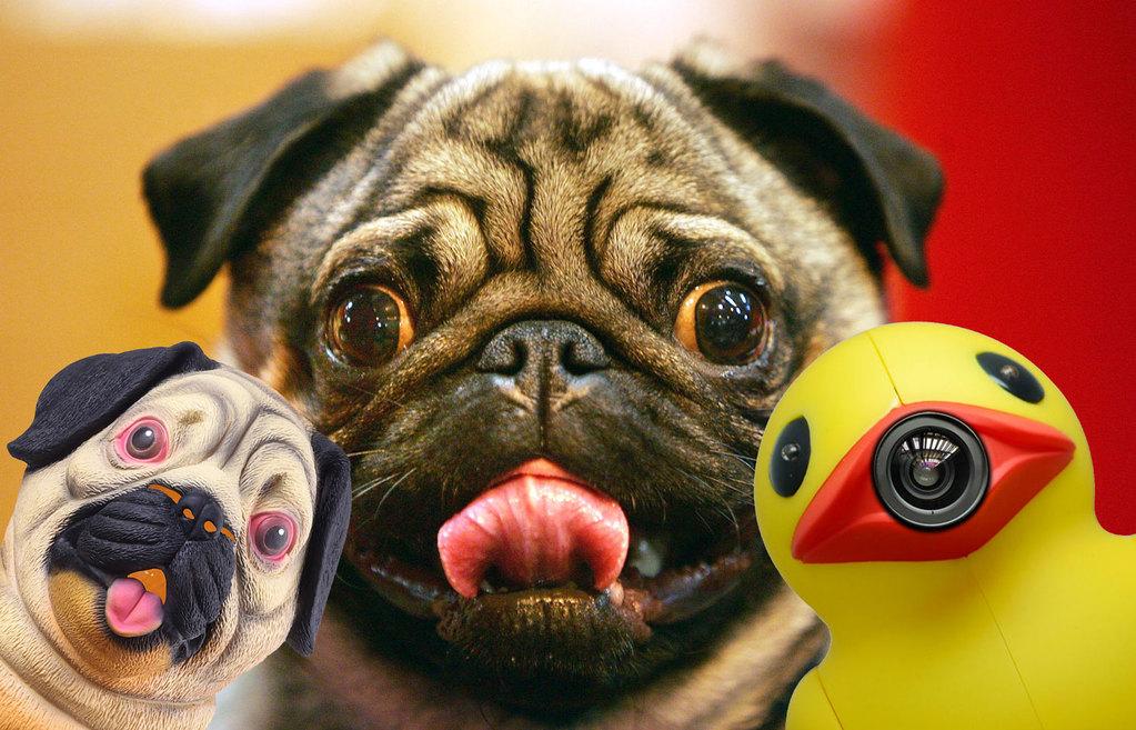 Top vijf bizarre AliExpress koopjes en gadgets die je moet