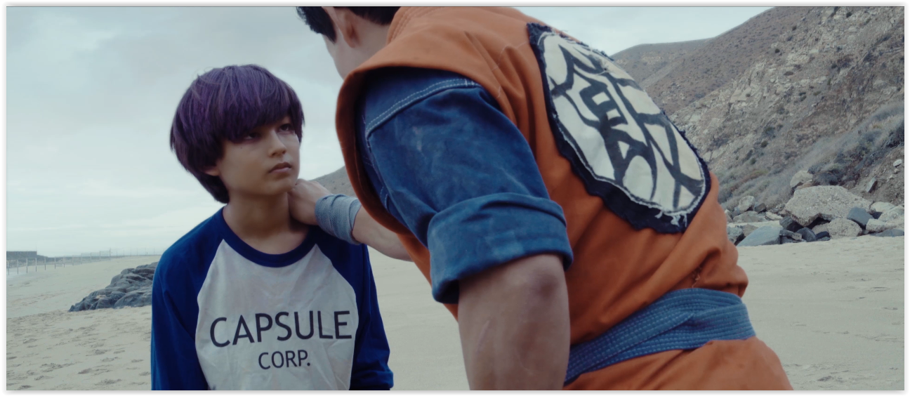 Dragon Ball Z: Light of Hope