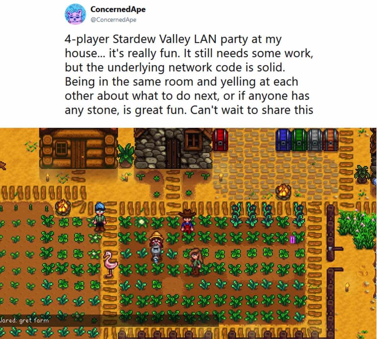 Stardew Valley krijgt binnenkort een multiplayermodus - WANT