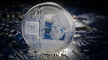 Litecoin or bitcoin cash investment