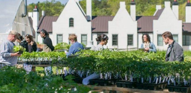 Groen utopia duurzaamheid