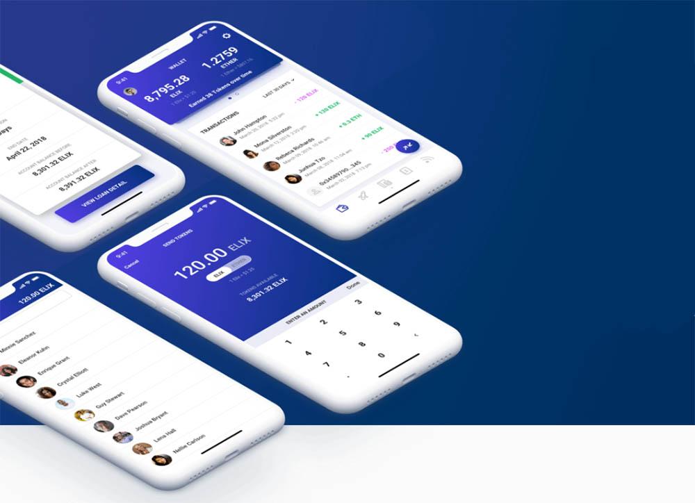 Elix grootboek app