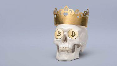 Bitcoins schedel