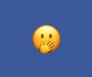 Facebook snooze