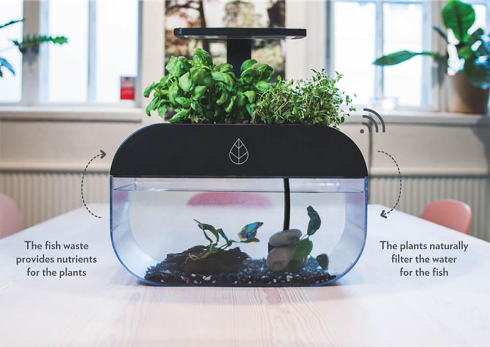 EcoGarden plantenbak/aquarium