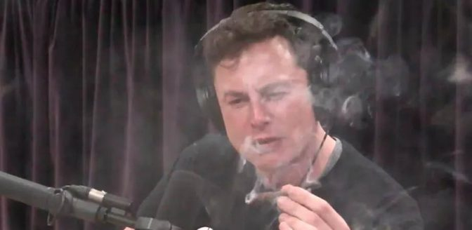 Elon Musk joint