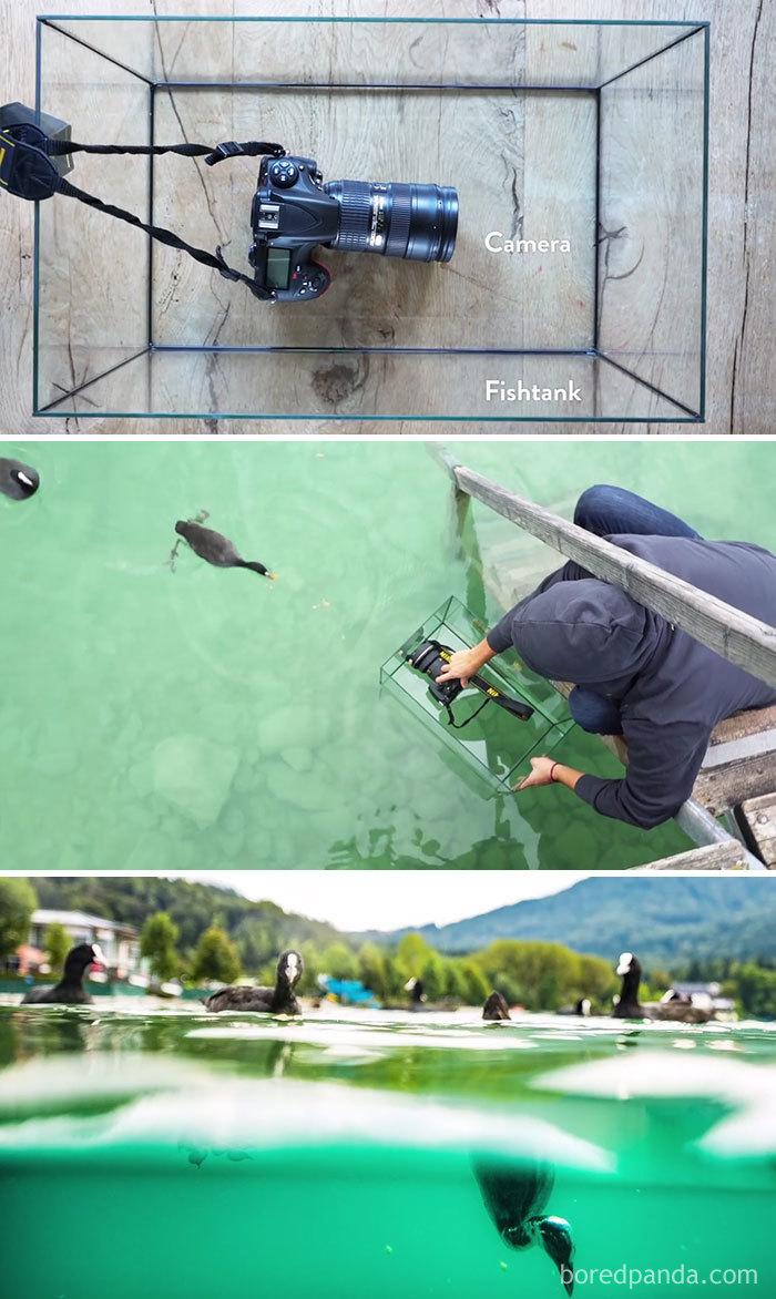 onderwater effect Bored Panda