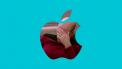Apple FaceTime 14-jarige