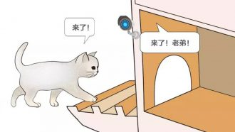 Baidu kattenopvang