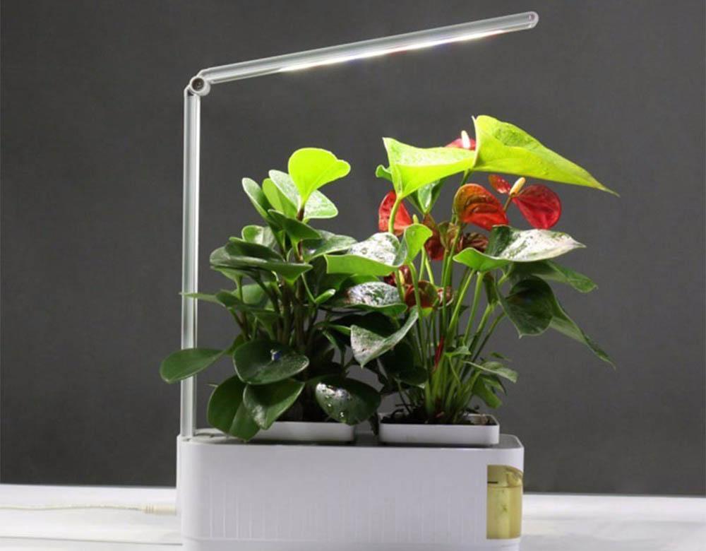 AliExpress slimme plantenbak