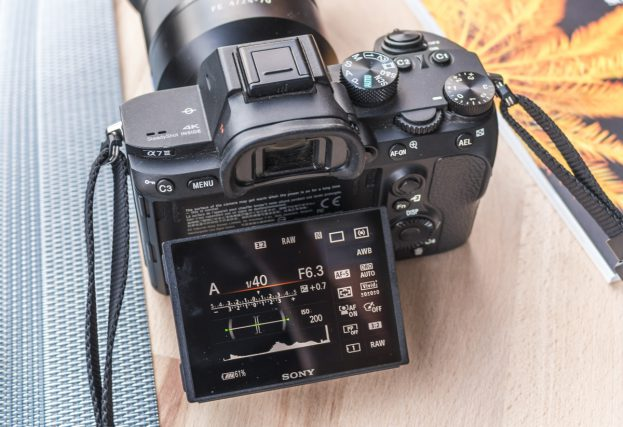 Sony A7 Mark III review display