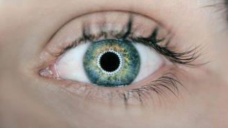 Wetenschappers contactlens inzoomen oog