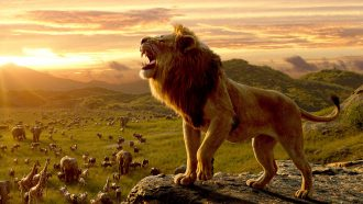 Lion King Disney Frozen