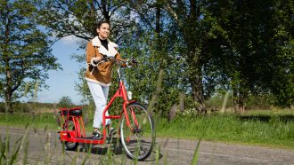 Lopifit elektrische fiets