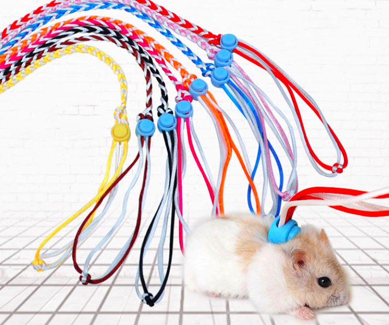 Hamsterriem AliExpress