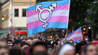 transgender vlag emoji 13.0