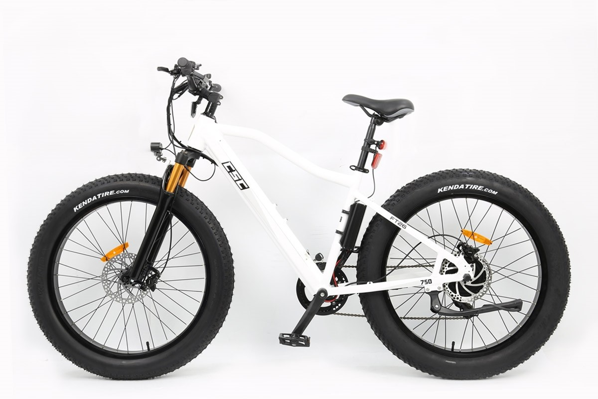 E-bike elektrische fiets FT750