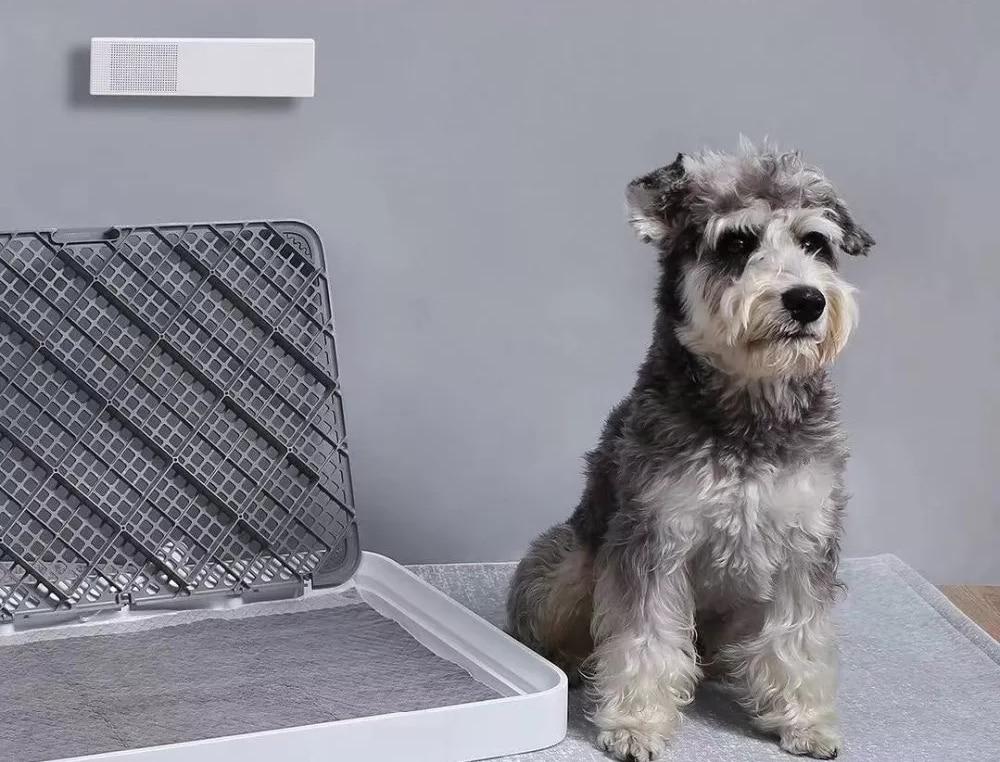 elektrische luchtverfrisser honden stank