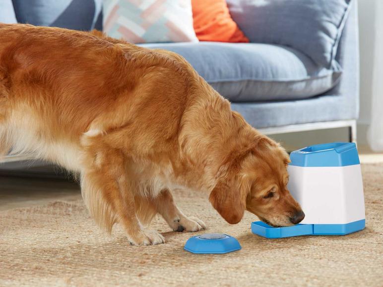 geheugentrainer hond Lidl